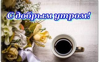 Красивое утреннее приветствие женщине. Смс с добрым утром любимой своими словами. Самые красивые пожелания доброго утра девушке в стихах
