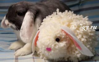 Пасхальный кролик из помпонов своими руками. Мастер-класс с пошаговыми фото. Игрушки из помпонов своими руками: мастер-класс «Зайчик