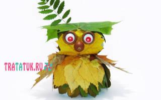 Как сделать сову из кленовых носиков пошагово. Совушка из отцветших веточек. Сова из желудей, шишек и листьев
