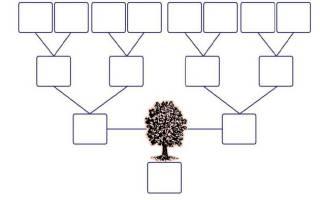 Прямая степень родства. Родственные связи и степени родства у славян. Новая семья — новая родня