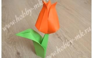 Оригами из бумаги лист для тюльпана. Как сделать тюльпан из бумаги своими руками поэтапно: пошаговая инструкция со схемами, фото и видео. Стебелек для цветка