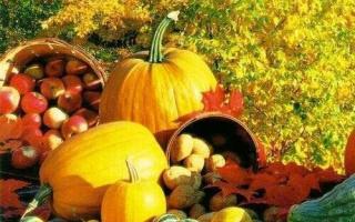 Осенины: традиции народного праздника. Фольклорный осенний праздник в подготовительной группе «Осенины – осени именины