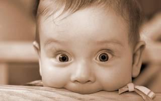 Ребенок кусает во время кормления грудью. Личные данные покупателя. Таким образом ребенок привлекает внимание матери