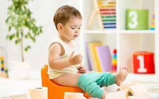 Как приучить ребенка к горшку: все методы и способы. Пошаговые рекомендации по приучению годовалого малыша к горшку