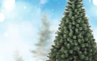 Елочный бизнес: как заработать на продаже елок. Гипсовый искусственный камень. Импорт искусственных цветов из Китая