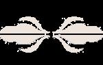 Научно практический центр медицинской помощи детям дзм. Отзывы о Научно-Практический центр медицинской помощи детям с пороками развития черепно-лицевой области и врождёнными заболеваниями нервной системы»»
