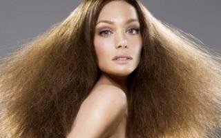 Эффект одуванчика: как усмирить пушащиеся волосы. Блог полезных советов: как убрать пушистость волос