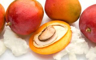 Польза и применение масло манго для волос. Практическое применение масла из косточек манго
