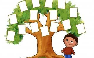 Как составить фамильное древо. Пошаговая инструкция. Как построить семейное древо онлайн на FamilySpace Как правильно составить родословное дерево