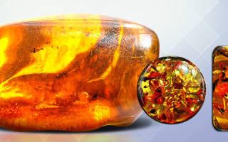 Кто носит янтарь. Камень янтарь. Магические свойства камня
