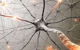 Все забываю плохая память что делать. Методика «Изучение непроизвольной и произвольной памяти». Лечение причин плохой памяти