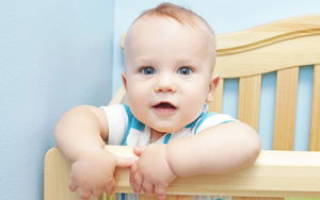 Развитие ребенка ы 8 месяцев. Кризисный период: что должен уметь ваш ребенок в восемь месяцев