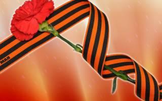 Какие цветы нужно приносить на кладбище. Цвета скорби: какие цветы на похороны уместны? Живые и искусственные цветы на кладбище