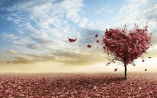 Интересные рассказы про любовь из жизни. Короткие рассказы для души — небольшие душевные истории со смыслом