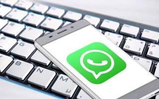 Прикольные статусы про жизнь для whatsapp. Красивые статусы на Ватсап: стань заметнее