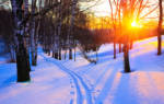 Чем хороша зима? Традиции русского народа. Русские народные праздники