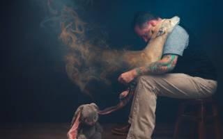 Смерть собаки что значит. Как пережить смерть собаки: советы психолога. Смерть без покаянья — собачья смерть