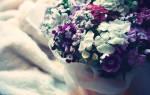 Чем удивить девушку в день рождения. Как удивить девушку Вконтакте — идеи и предложения