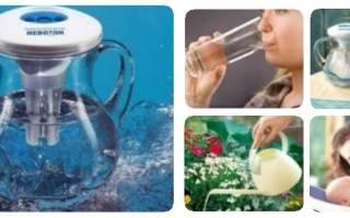 Польза воды с серебром. Польза и вред серебряной воды. Как сделать в домашних условиях и как применять для лечения