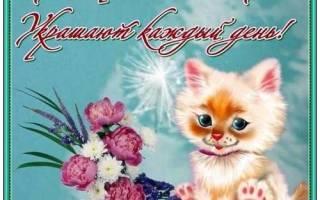 Хорошего дня любовь моя. Пожелание хорошего дня любимому, любимой в прозе. Пожелание хорошего дня девушке