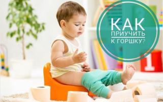 Как приучить ребенка к горшку — эффективные методики и советы. Ошибки молодых мам. Приучая ребенка к туалету будьте осторожны