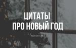 Мысли на новый год. Цитаты и афоризмы про новый год