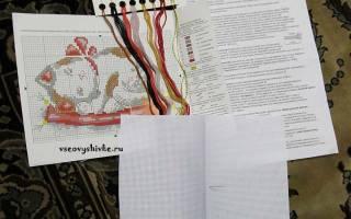 Пошаговая фотоинструкция вышивания крестиком. Вышивка крестиком с чего начать