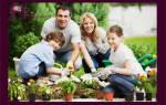 С кем создать семью. Что делать, если хочется создать семью и иметь детей, но не получается? Секреты счастливой семейной жизни