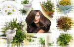 Ополаскивание волос после мытья. Чем полоскать волосы? Чем ополаскивать волосы после мытья: все лучшие средства