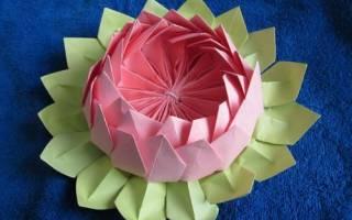 Водяная лилия оригами пошаговая инструкция. Объёмная игрушка из бумаги своими руками «Кувшинка — булавочница. Для этого нам понадобится