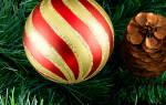 Идеи для семейного празднования нового года. Как провести Новый год дома? Семейный стиль