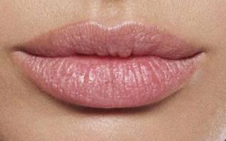 Цвет губ и характер. Определяем характер по форме губ