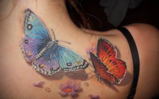 Значение тату бабочка на ноге. Какое значение имеет бабочка — милая крылатая волшебница
