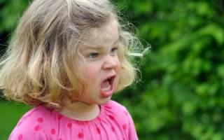 Почему у маленьких детей возникает агрессия. Детская агрессия — что делать