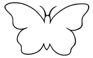 Как вырезать бабочку из бумаги: несколько способов на любой вкус. Как сделать бабочек на стену своими руками