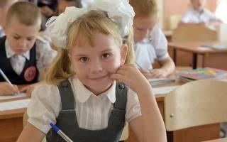 Какие есть варианты если не учиться. «Не хочу учиться!». Что делать, если ребенок отказывается идти в школу