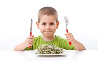 Почему ребенок плохо ест. Детский аппетит. Что делать, если ребенок мало ест