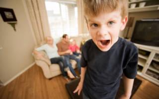 Что делать когда ребенку два года и он очень капризный. Почему капризничает ребенок